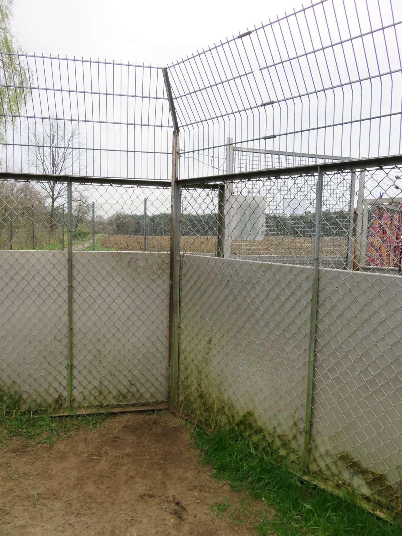 Sanierung der Hundeausläufe | Tierschutzverein Soltau