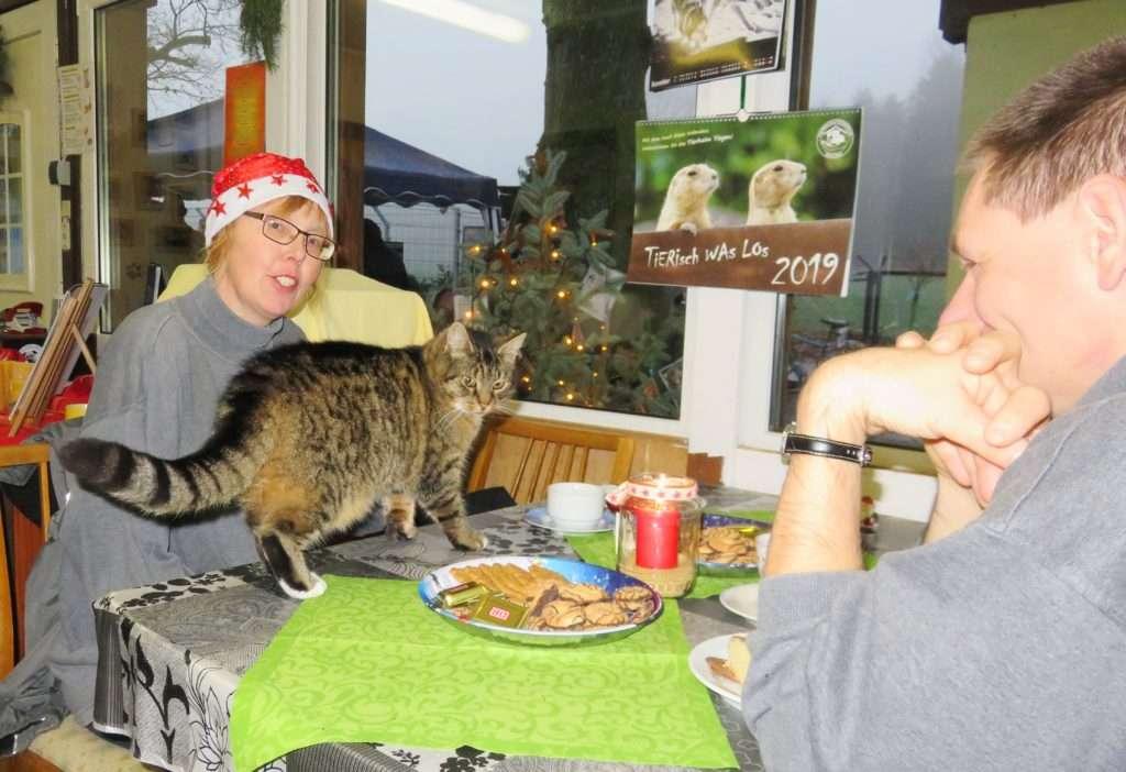 Dieses Bild hat ein leeres Alt-Attribut. Der Dateiname ist Weihnachten-im-Tierheim-2018-26-2-1024x702.jpg